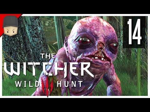 The Witcher 3: Wild Hunt - Ep.14 : The Botchling! (The Witcher 3 Gameplay / Walkthrough)
