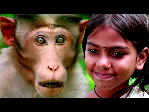 Bollywood Full Movies - Malli - New Hindi Dubbed Movies – Kids Jungle Film - Latest Comedy Movie