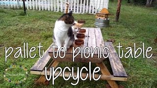 How to make a pallet picnic table | DIY Pallet Upcycle