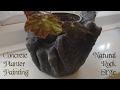 Concrete Planter Painting | Natural Rock/Stone Style