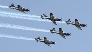 AAD2014 SAAF Silver Falcons South African Air Force