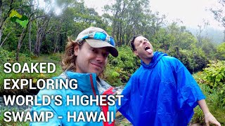 WHERE IS THE WORLD HIGHEST SWAMP | KAUA'I | ADVENTURE HYDROLOGY | ONE OF THE WETTEST SPOT S ON EARTH