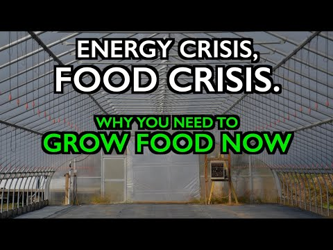 Energy Crisis becomes a Food Crisis - Grow Food and Build Local Food Systems Now!