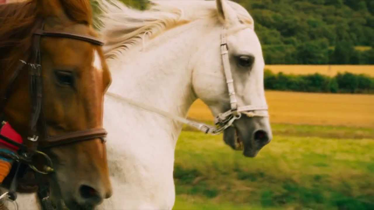 Ausmalbilder Bibi Und Tina Film : Atemberaubend Ausmalbilder Bibi Und Tina Pferde Bilder Malvorlagen