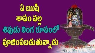 ఏ ఋషి శాపం వల్ల శివుడు లింగరూపంలో పూజింపబడుతున్నాడు | Pooja TV Telugu