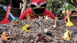 Trò Chơi Đi Cứu Con vật Và Côn Trùng ❤ ChiChi ToysReview TV ❤ Đồ Chơi Trẻ Em