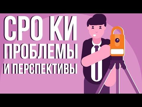 СРО Кадастровых инженеров. Проблемы и перспективы