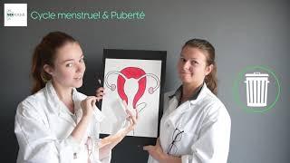 Cycle menstruel & Puberté