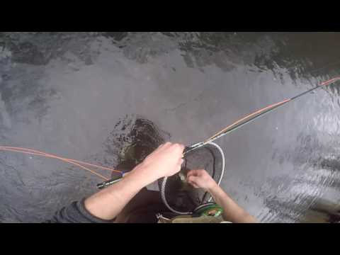 Nymph Fly Fishing The Elk River Tennessee