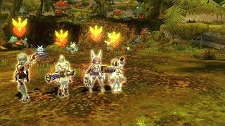 DNTH] Green Dragonnest Time attack Little Ruina POV