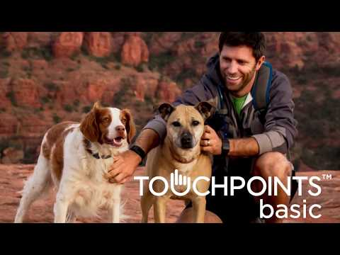 TouchPoints™ basic - Version 2