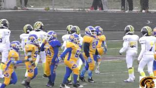 2015 D-Team Championship Game: Motor City Wolverines vs. West Seven Rams (11-7-2015)