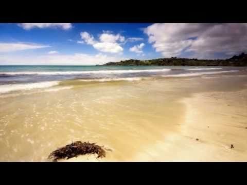 Jakatta - One Fine Day (Cicada Mix)
