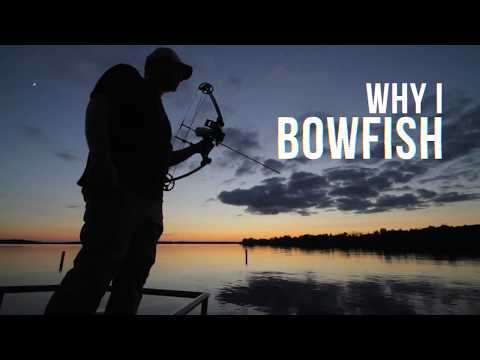 Why I Bowfish By AMS