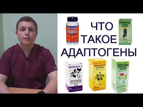 АДАПТОГЕНЫ И СПОРТ | Чем травы полезны | Adaptogenic Herbs