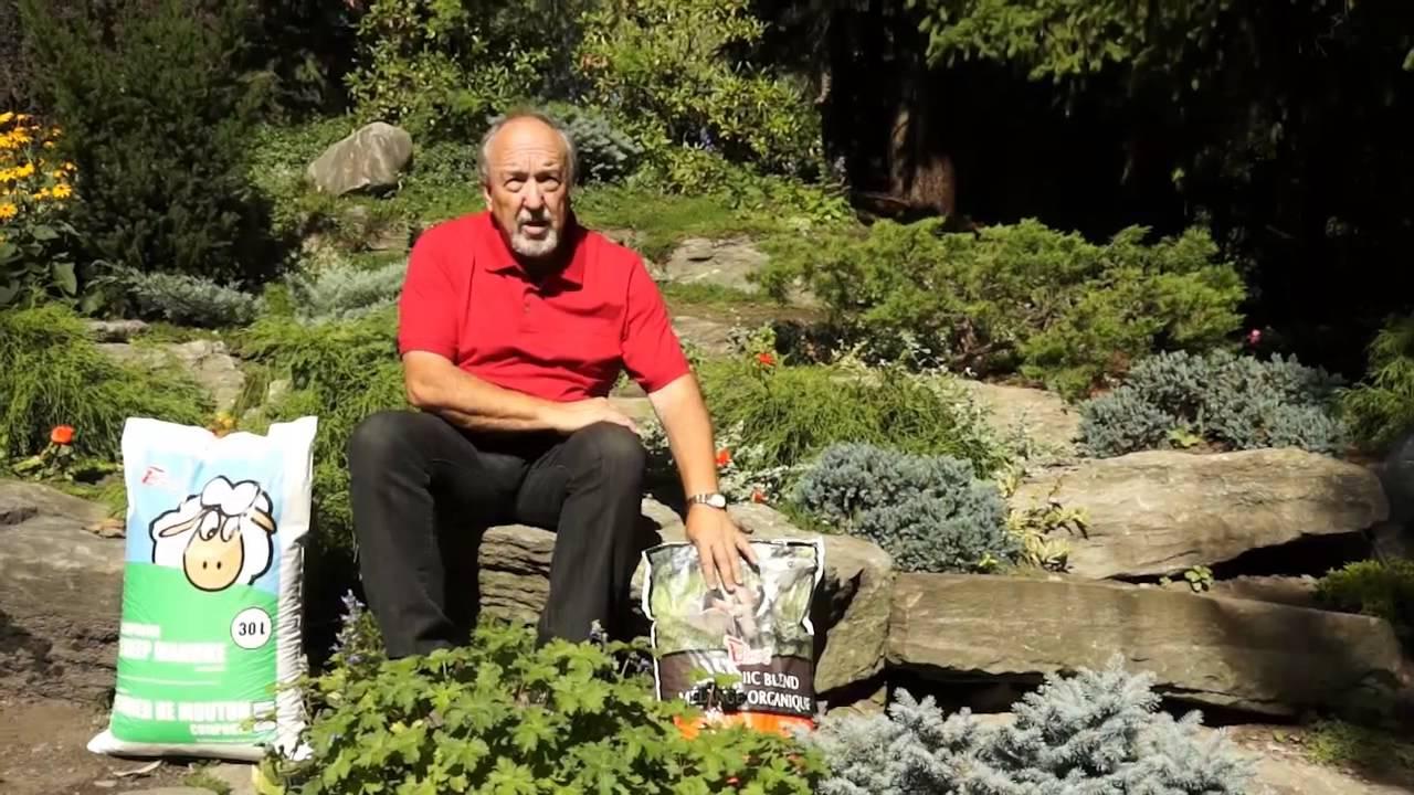 Garnir Une Rocaille Avec Les Plantes Alpines Youtube