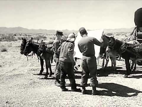 Exercise Desert Strike - United States Army & Air Force Wargames 1964 - WDTVLIVE42