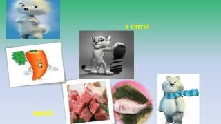 Презентация Favorite food