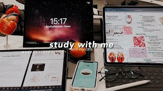 STUDY WITH ME and my Cats 😽Pomodoro 🍅Fireplace ASMR