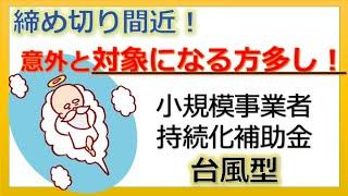 最大100万円または200万円補助!小規模事業者持続化補助金(台風型)