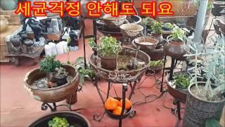 이조전통옹기의 자연가습기 /옹기분수/실내분수