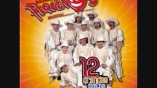 el negrito BANDA PEQUENOS MUSICAL