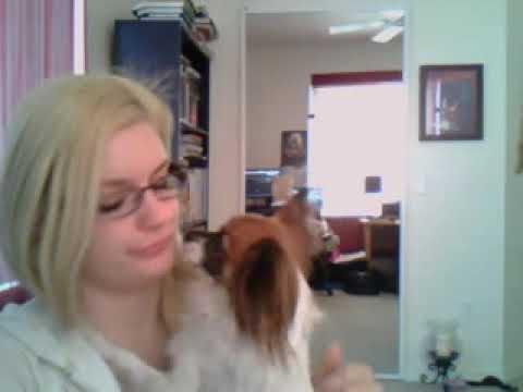 Daniee webcam