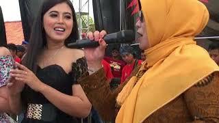 Gambar cover New Palapa - All Artis - Pesta Panen (Kayu Manis Gringsing Batang)