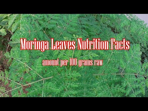 Moringa Oleifera Leaves Nutrition Facts