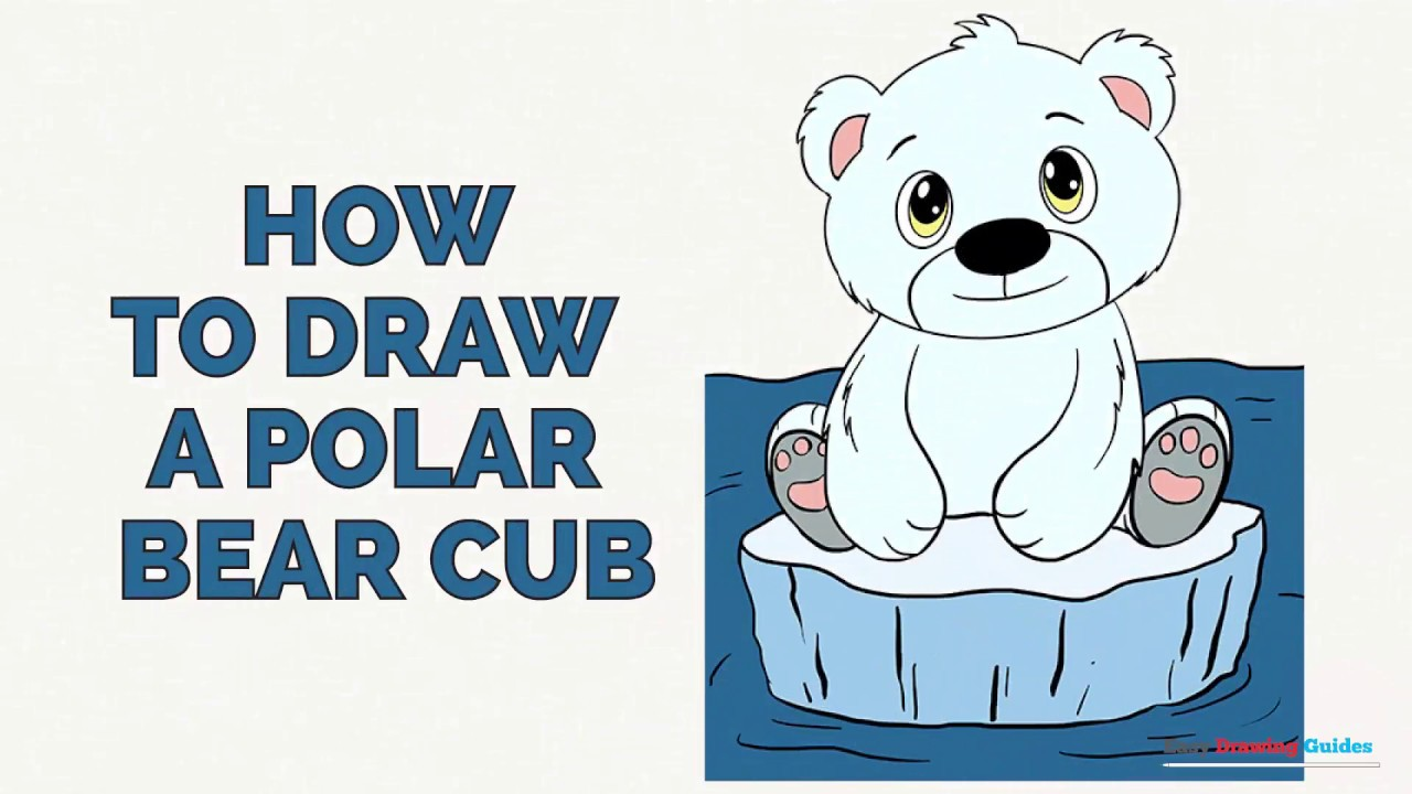 How To Draw A Polar Bear Cub In A Few Easy Steps Drawing Tutorial For Kids And Beginners