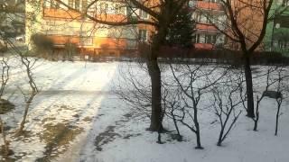 Dziwne dźwięki / Strange sounds Włocławek 1. .  2014.02.05 r