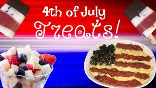 DIY Healthy 4th of July Treats! | Nikki Stixx