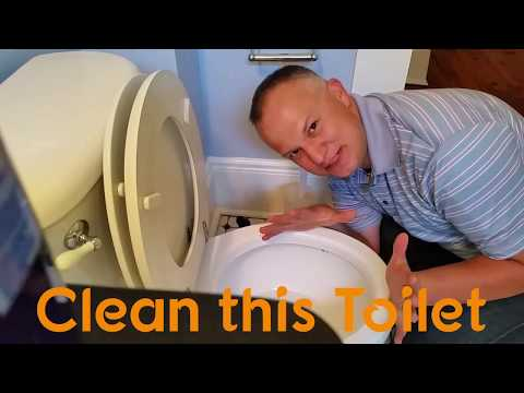 How Do I Clean a Toilet?  - Rusty Toilets and Lysol