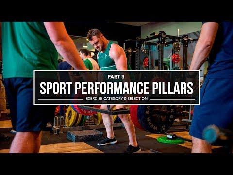 Sport Performance Pillars   Exercise Classification & Selection   JTSstrength.com