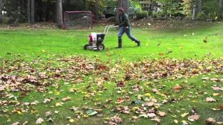 Fight back at your leaves with the little wonder 9HP leaf blower!