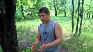 Школа мастеров: Как защитится от гопников(Лучший урок самообороны., 2013-05-17T12:42:41.000Z)