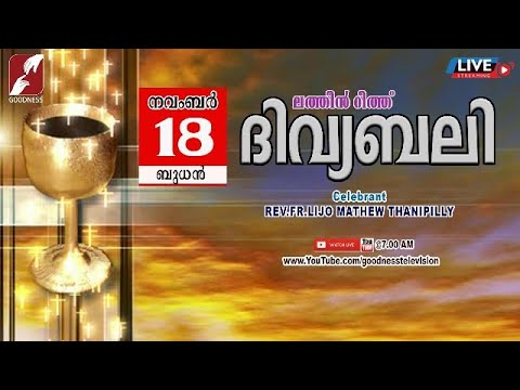 HOLY MASS LATIN MASS | FR LIJO MATHEW THANIPPILLY | വിശുദ്ധ