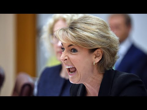 Michaelia Cash makes 'outrageous slur' during questioning over staff