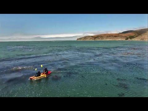 Beach Out of Reach Becomes Focus of Coastal Access Debate