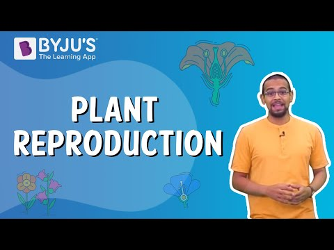 plant-reproduction- -learn-with-byju's