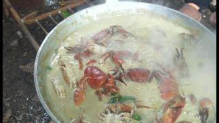 Catch & Cook (EP3) Native Wild Crabs | Ginataang Piyo O Kagang