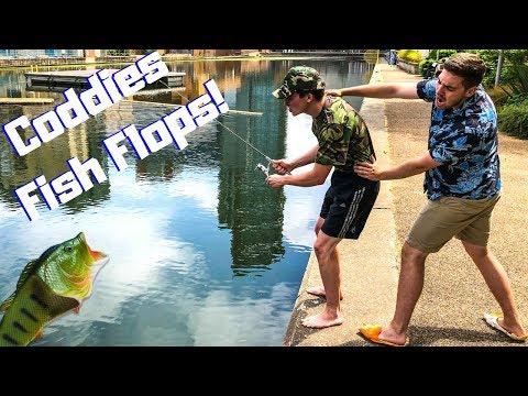 Coddies Fish Flops - The Fish Wear Revolution!