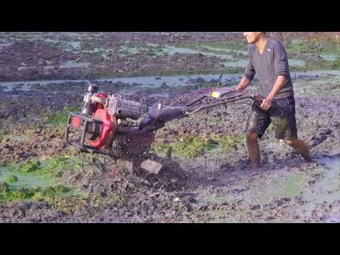 mini tiller with steering system works in paddy field
