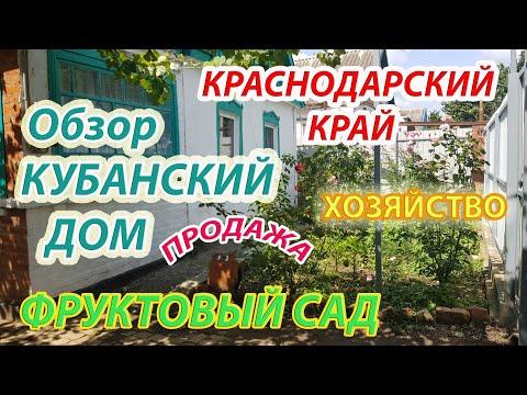 Краснодарский край | Северская | Обзор дом в продаже | Уютная кубанская усадьба фруктовый сад