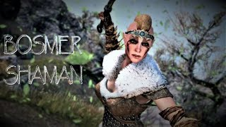 Skyrim SE Remastered Builds: The Bosmer Shaman (Read Below)