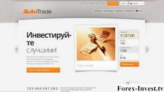 Автоматическая торговля на Форекс (секреты ZuluTrade)