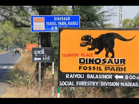 Dinosaur Fossil Park Raiyoli,Balasinor | Way to the Historical place in Gujarat