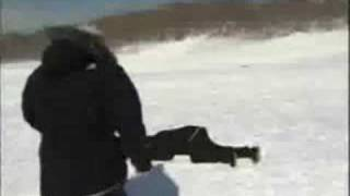 News Reporter Gets Hit By Sled