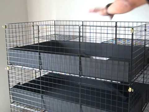 C c guinea pig cage 2x3x3 large 3 level colonial open top for Making a c c cage