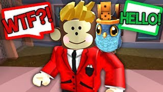 MY PET OWL CAN TALK?! (Roblox)